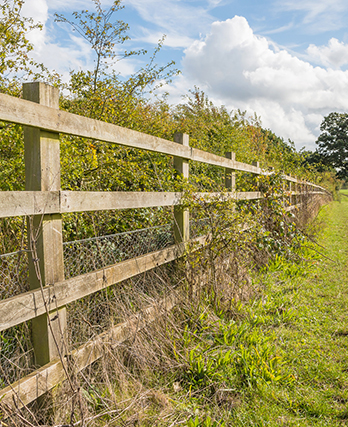 Agricultural Fencing Solutions